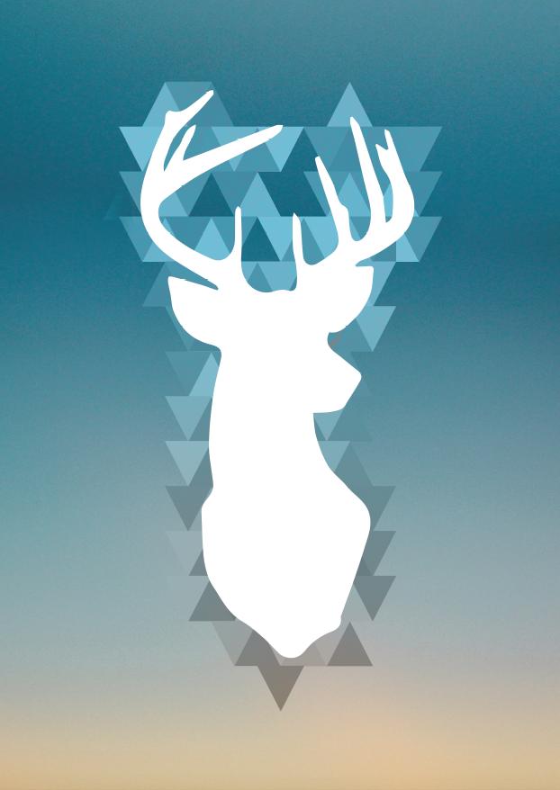 Poster cerf / deer